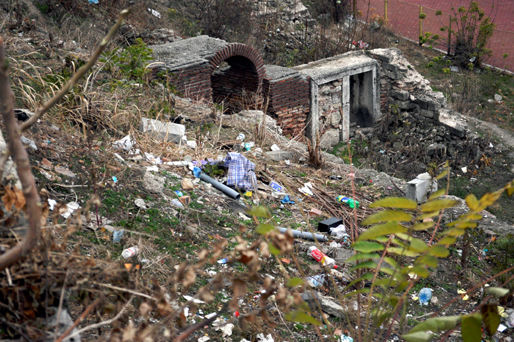 Istorie îngropată în gunoaie - stradaovidiupeninsula26-1321290209.jpg