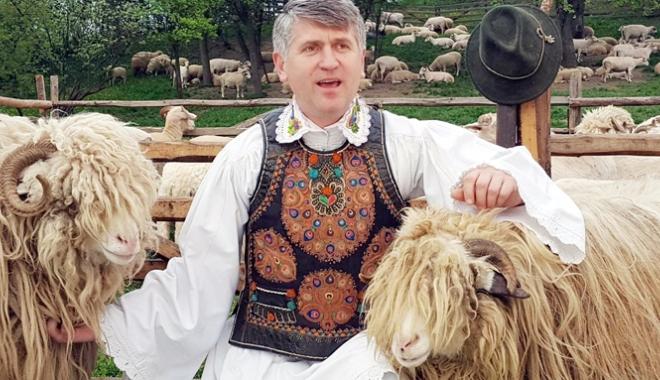 Foto: Subvenţia de un leu nu împiedică lâna românească să ajungă la gunoi sau la foc