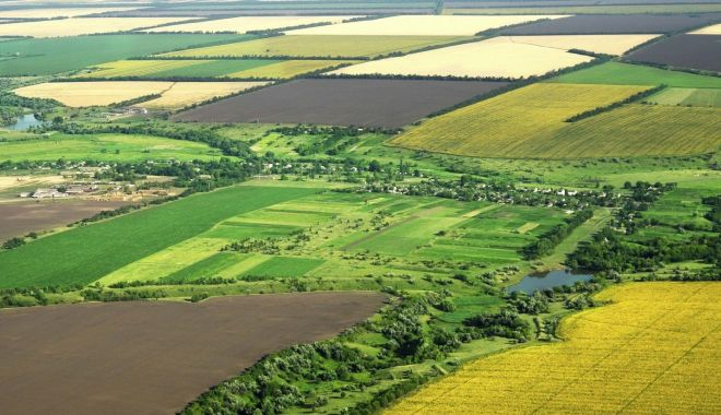 Terenurile agricole se vor putea vinde după ambele legi - terenurileagricolesevorputeavind-1606418015.jpg
