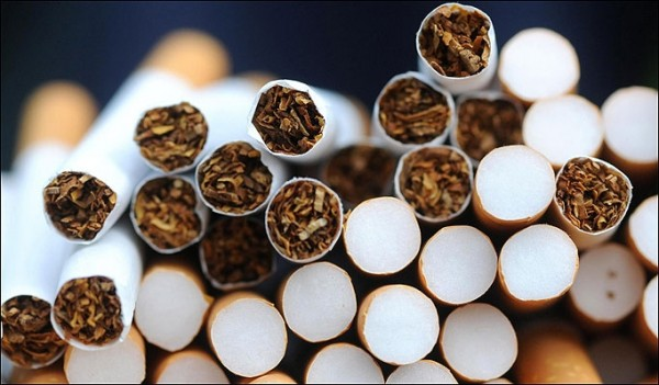 Foto: Bella, câinele antitabac, a descoperit 124.000 ţigarete de contrabandă