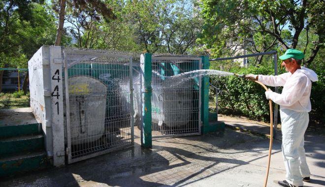 Foto: Toate platformele de deşeuri din oraş sunt dezinfectate
