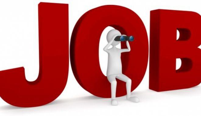 Foto: Mii de locuri de muncă disponibile! Iată ce se caută