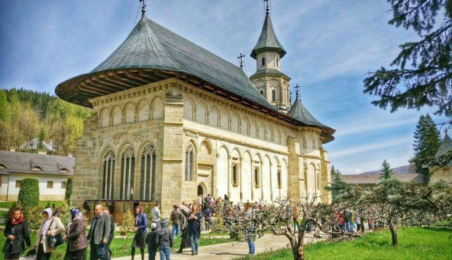 """Foto: România va adopta conceptul de """"wine tourism"""""""
