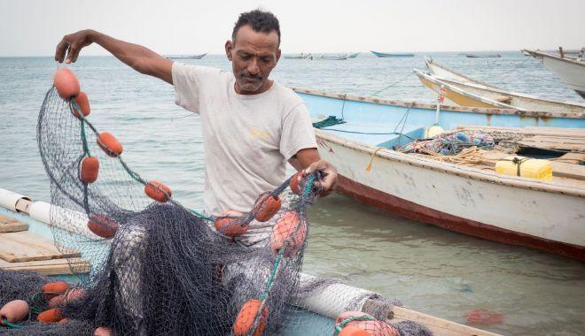 BBC - Un grup de pescari din Yemen a descoperit ambră gri în stomacul unui caşalot - ungrupdepescari-1622565730.jpg