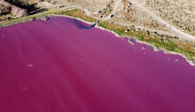 Un lac din Patagonia s-a făcut roz peste noapte - unlac2-1627390209.jpg