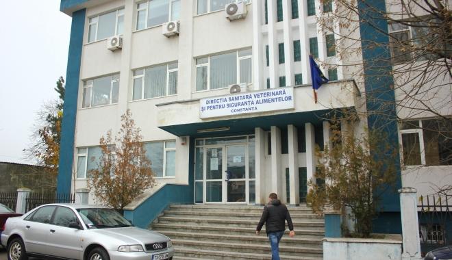 Foto: Un nou director la DSV Constanţa!