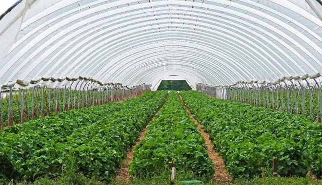 Un nou program pentru fermieri - unnouprogrampentrufermieri-1610706690.jpg