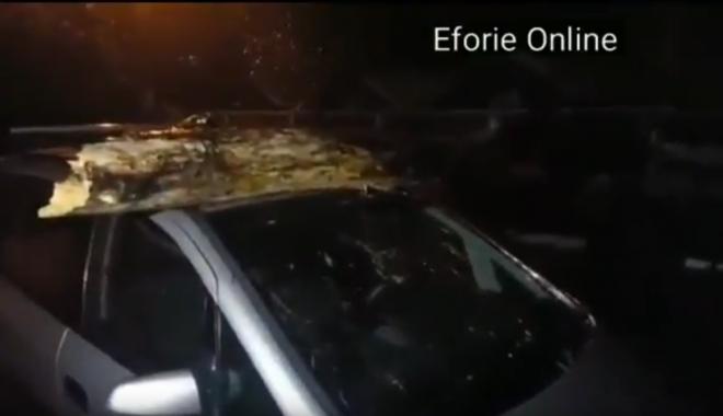 Foto: VIDEO. VIJELIA A FĂCUT RAVAGII, LA CONSTANŢA / COPAC CĂZUT PESTE MAŞINĂ, ÎN EFORIE NORD