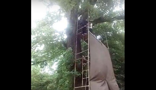 Foto: VIDEO. MOMENTUL ÎN CARE UN COPIL A CĂZUT DE LA 8 METRI, DUPĂ CE S-A RUPT TIROLIANA