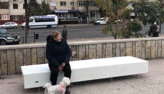 Foto: CONSTANŢA SE ÎNFRUMUSEŢEAZĂ! Bănci noi pentru Parcul Casei de Cultură!