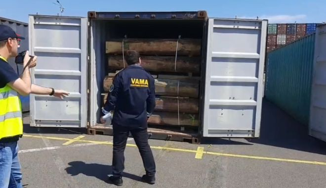 EXPORT DE LEMNE, ÎN ANCHETĂ! Șapte containere, oprite din drumul spre China! - untitled-1623312796.jpg