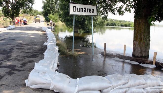 Foto: Urgia de pe Dunăre a ajuns în judeţul Constanţa