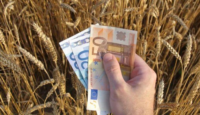 Foto: Veste bună pentru agricultori!
