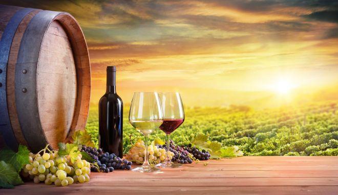 Foto: Vinul românesc, promovat ca brand de ţară