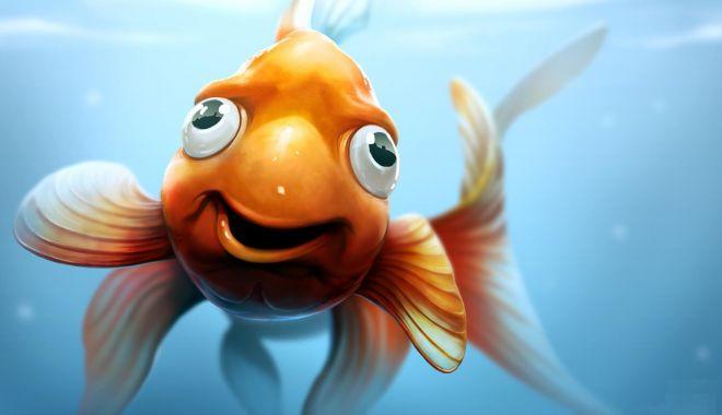 Foto: Vocabularul a trădat peştişorul de aur