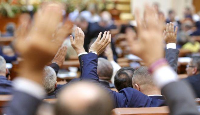 Foto: Senatorii din comisia juridică au respins propunerea privind parteneriatul civil