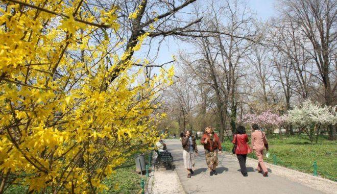 Foto: Meteorologii anunță vreme frumoasă, de primăvară, la Constanţa