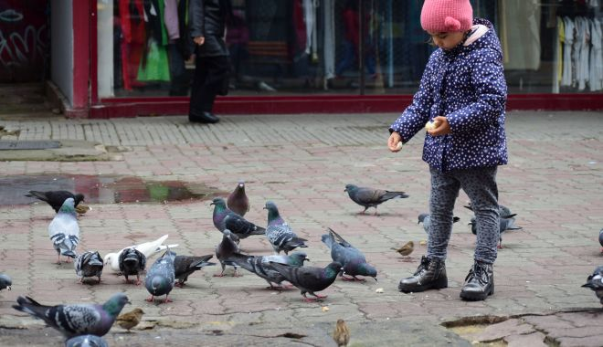 Foto: Vreme rece, la Constanţa