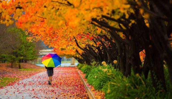 """Foto: Vreţi să vedeţi  cum arată  """"Toamna în culori""""?"""