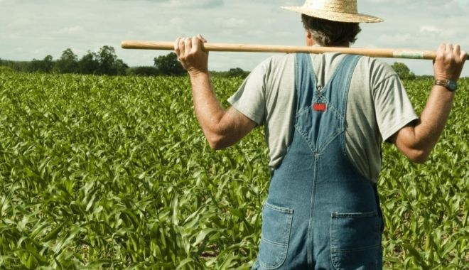 Foto: Vreți un teren agricol? Iată ce oferte și prețuri sunt în piață!