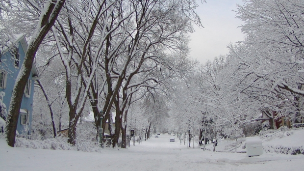 NE AȘTEAPTĂ O IARNĂ CUMPLITĂ! Ce fenomene extreme anunță meteorologii - winter00469400-1574068194.jpg