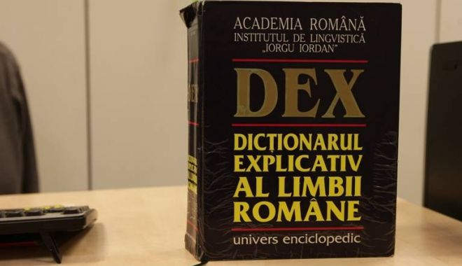 Foto: Guvernul a cumpărat 1.200 de dicționare și cărți de gramatică