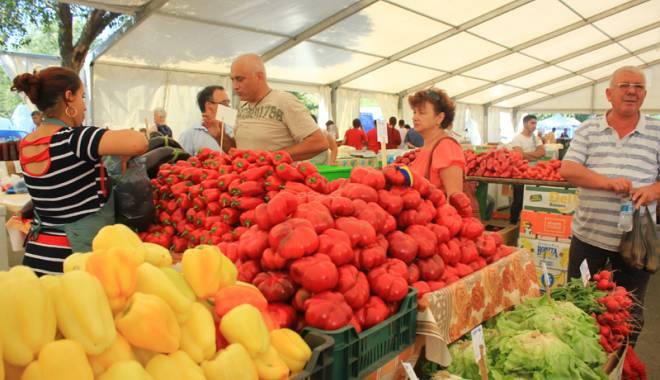 S-a deschis Sărbătoarea Recoltei şi a Vinului Dobrogean - ziuarecoltei24-1443202267.jpg
