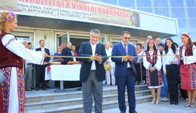 S-a deschis Sărbătoarea Recoltei şi a Vinului Dobrogean - ziuarecoltein2-1443202275.jpg