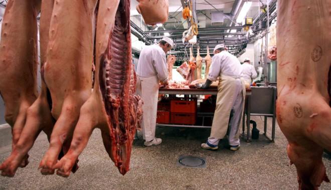 Foto: Zootehnia a livrat cantităţi mai mari de carne pe piaţă în 2013
