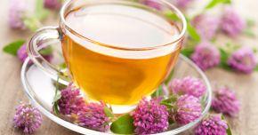 Ceaiul de rozmarin și roiniță, efecte benefice asupra memoriei
