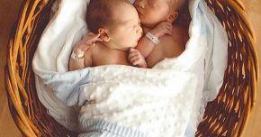 Gemeni identici sau fraternali? Care sunt diferențele