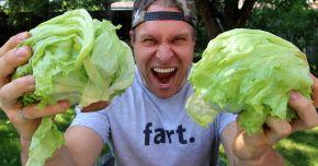 Ești stresat ? Mănâncă salată verde!
