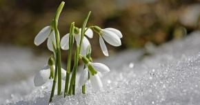 PROGNOZA METEO PE TREI LUNI. Iată când vine primăvara şi cum o să fie vremea de Paşte