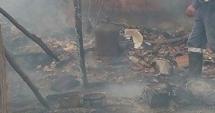 Galerie foto-video. Pompierii din Constanţa, în alertă! Saivan cu animale, cuprins de flăcări