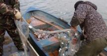 Prinşi de poliţişti în timp ce pescuiau ilegal