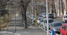 Atenţie, constănţeni, se toaletează copacii şi spaţiile verzi din centrul oraşului