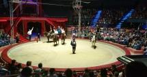 Circul Globus din București va fi condus de Bogdan Stanoevici și Sanda Ladoși
