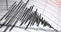 Un cutremur cu magnitudinea 3,7 pe Richter, în judeţul Buzău