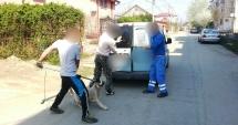 Trei bărbaţi au atacat o maşină de ecarisaj, i-au spart geamul şi au eliberat câinii