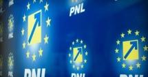 Biroul Politic Național al PNL se reuneşte luni, înainte de consultările de la Cotroceni