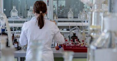 Cercetătorii au produs mai mulţi mini-rinichi, cu ajutorul tehnologiei