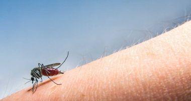 Încă o persoană a murit din cauza infectării cu virusul West Nile