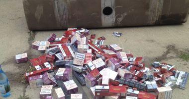 12.000 pachete de țigări și două autocamioane confiscate de vameși