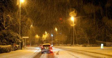 VIDEO / Ninsori, la Constanța. Drumarii intervin în județ