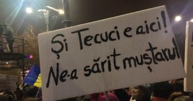 Criticul de artă Pavel Şuşară vrea să facă o expoziţie cu pancartele de la proteste