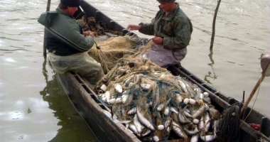 16 grupuri de acţiune locală pentru pescuit vor primi 37,5 milioane euro