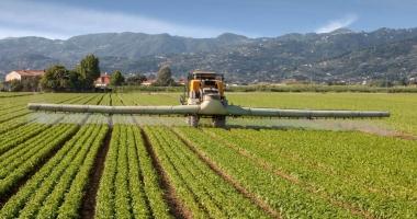 ALERTĂ MONDIALĂ! Substanţă controversată în sângele oamenilor, din cauza hranei modificate genetic
