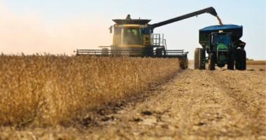 Ministerul Agriculturii angajează 50 de directori