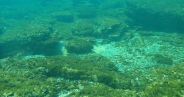 Cartografierea fundului mării: noi oportunităţi de creştere economică