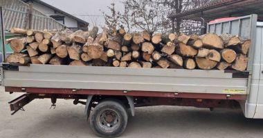 Depistat de jandarmi transportând lemne fără documente legale